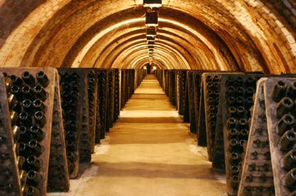Ruta del Vino del Penedes. Caves Pere Ventura